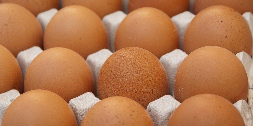 Frische Eier von Punsmann