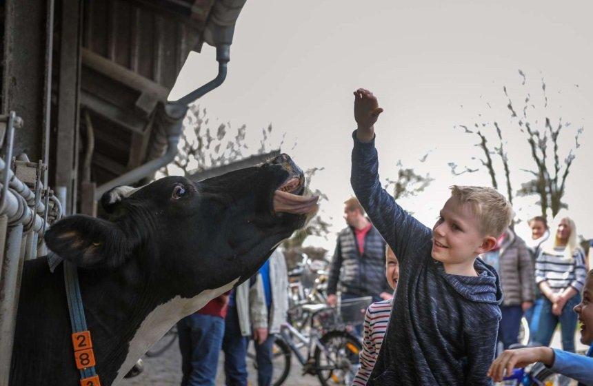 Tour de Buur bei Hof Kerkmann